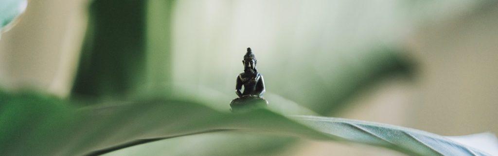 yoga buddha lang